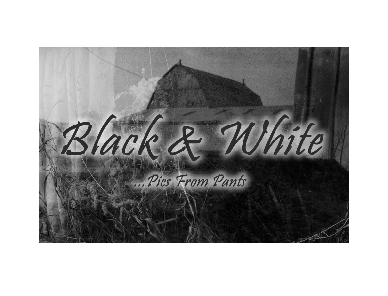 Enter Black & White Gallery